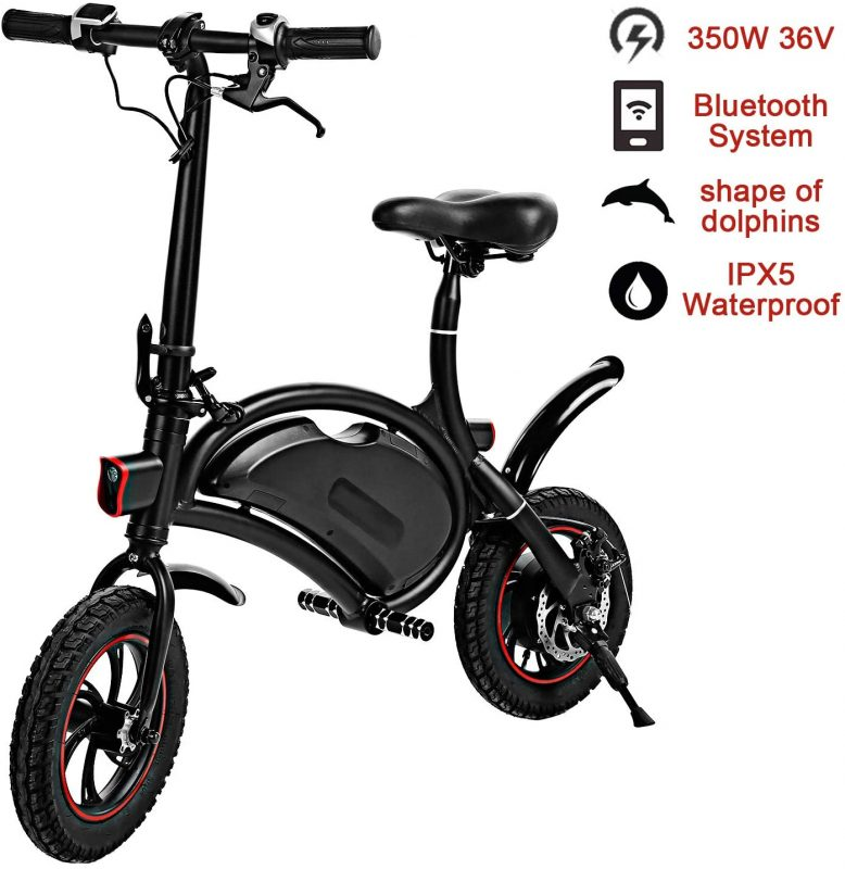 shaofu Folding Electric Bike